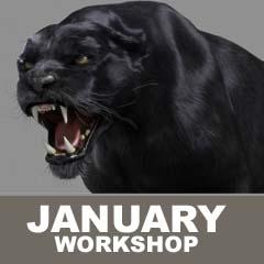 Creature Animation - January Quarter 2020